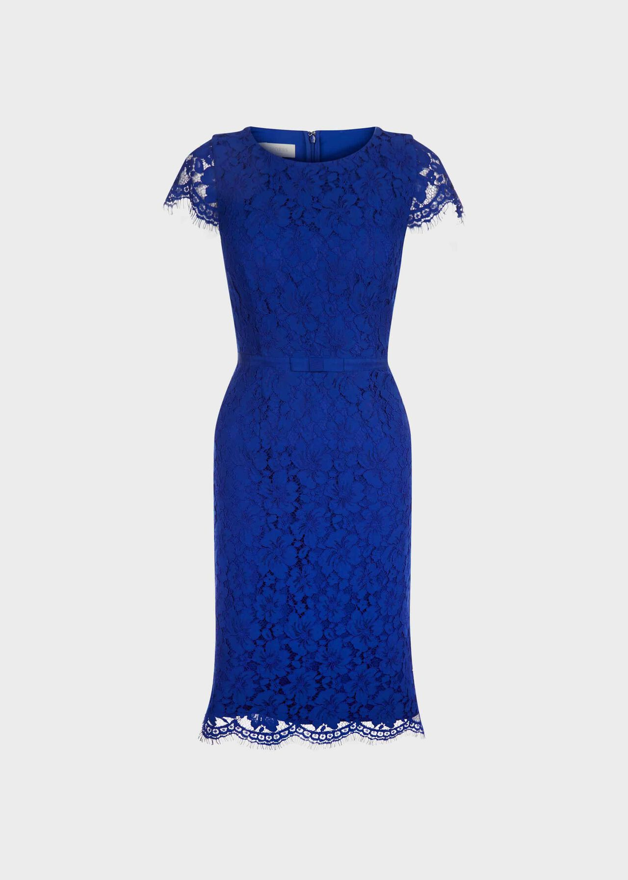 Elora Lace Shift Dress Cobalt