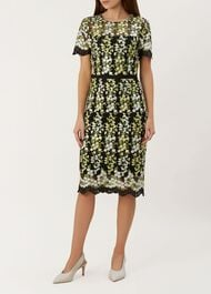 Rhoda Dress, Multi, hi-res