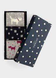 Dog Star Sock Set, Navy Multi, hi-res