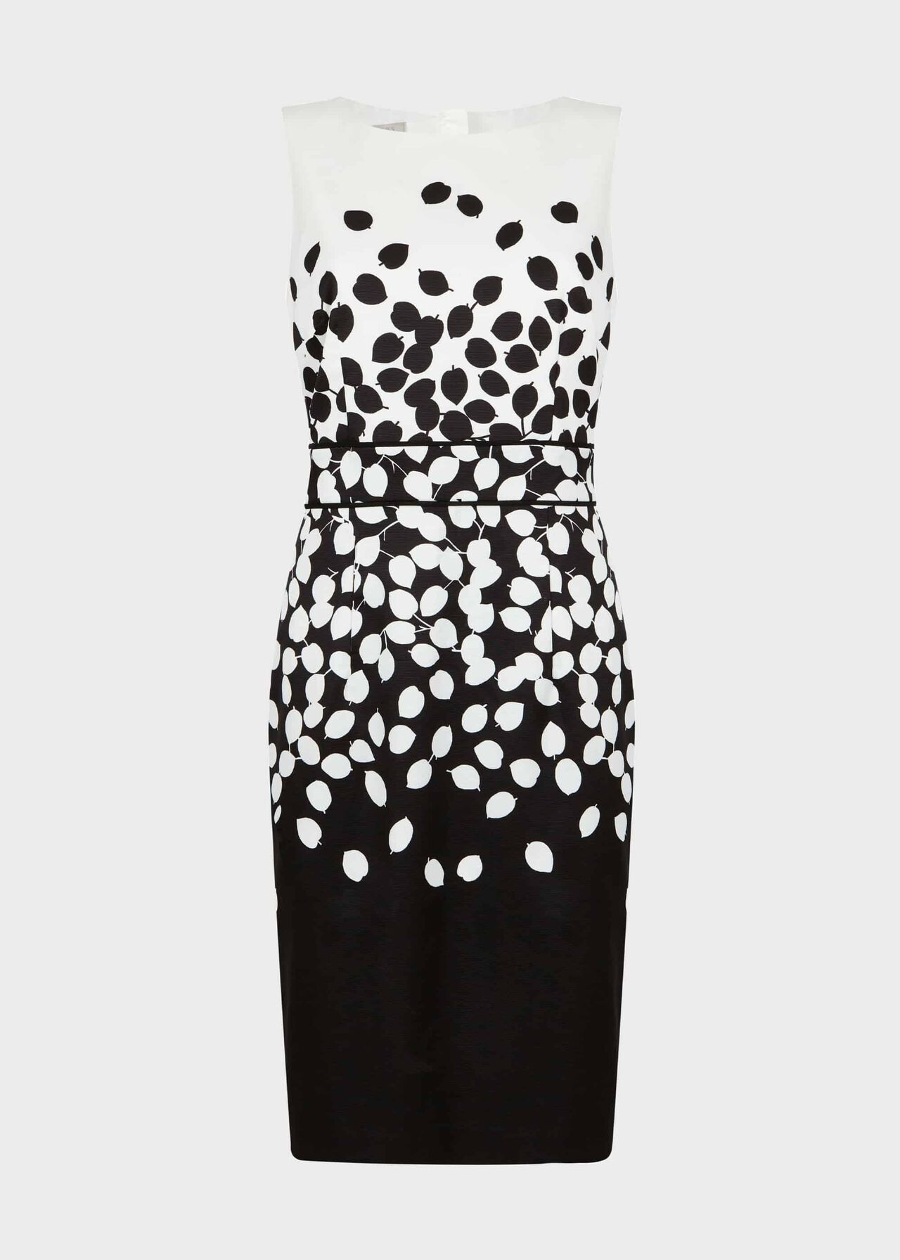 Moira Printed Dress Black Ivory