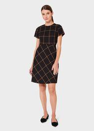 Evie Check A Line Dress, Black Putty, hi-res
