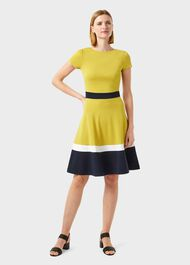Seasalter Jersey Fit And Flare Dress, Yellow Nvy Whte, hi-res