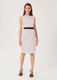 Fiona Cotton Blend Spot Shift Dress, Peony Black, hi-res