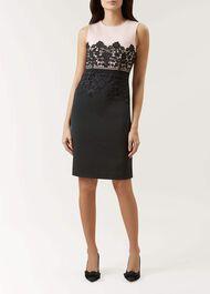 Seraphina Dress, Pink Black, hi-res
