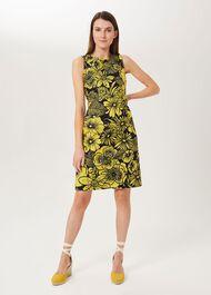 Carine Floral Shift Dress, Chartreuse Navy, hi-res