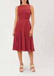 Della Midi Dress, Burgundy Multi, hi-res