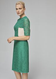 Penny Lace Shift Dress, Meadow Green, hi-res