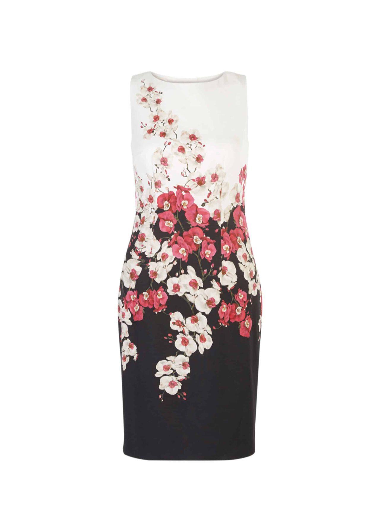 Moira Dress Black Multi