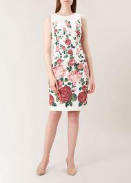 Victoria Rose Shift, Ivory Pink Mlt, hi-res