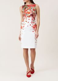 Fiona Dress, Ivory Red Multi, hi-res