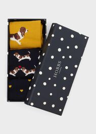 Beagle Dog Sock Set, Ochre Multi, hi-res