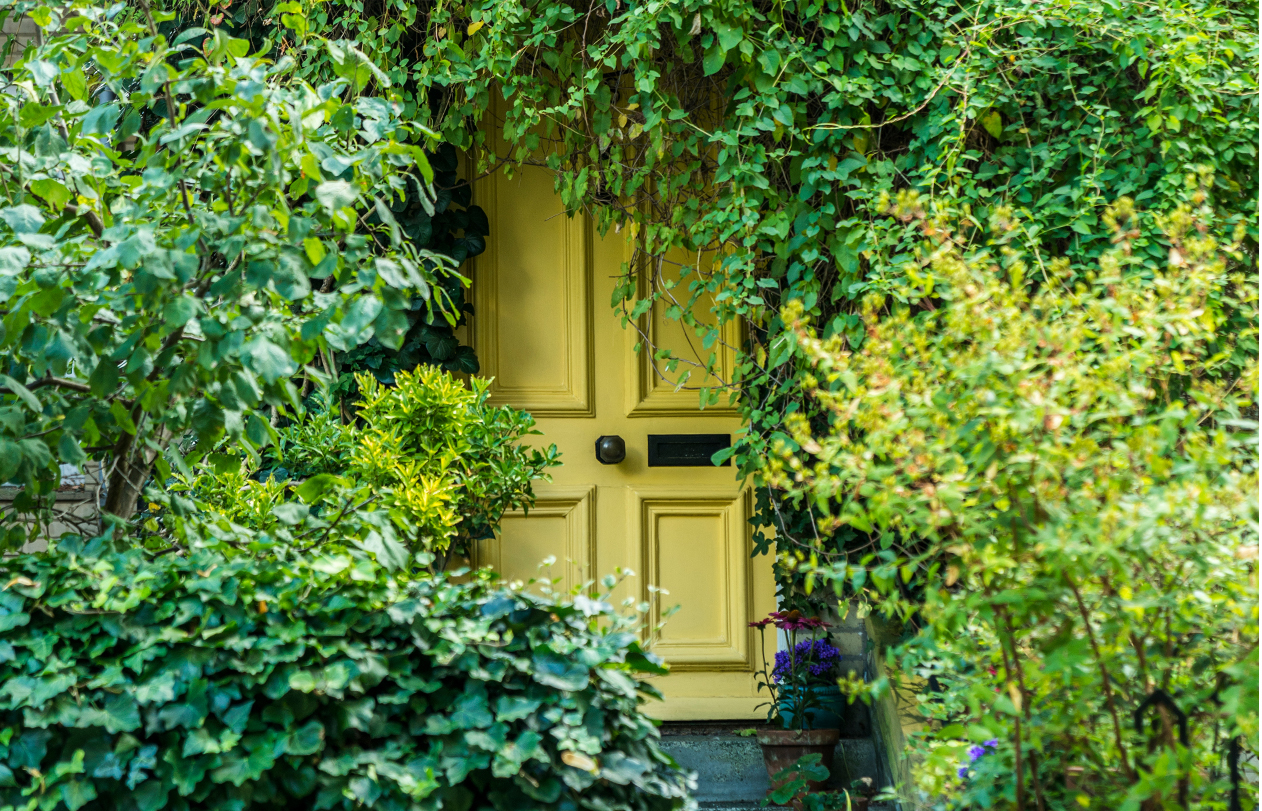 Discover whats behind thi sbright yellow front door and Visit our head of creative brand, rosarie king
