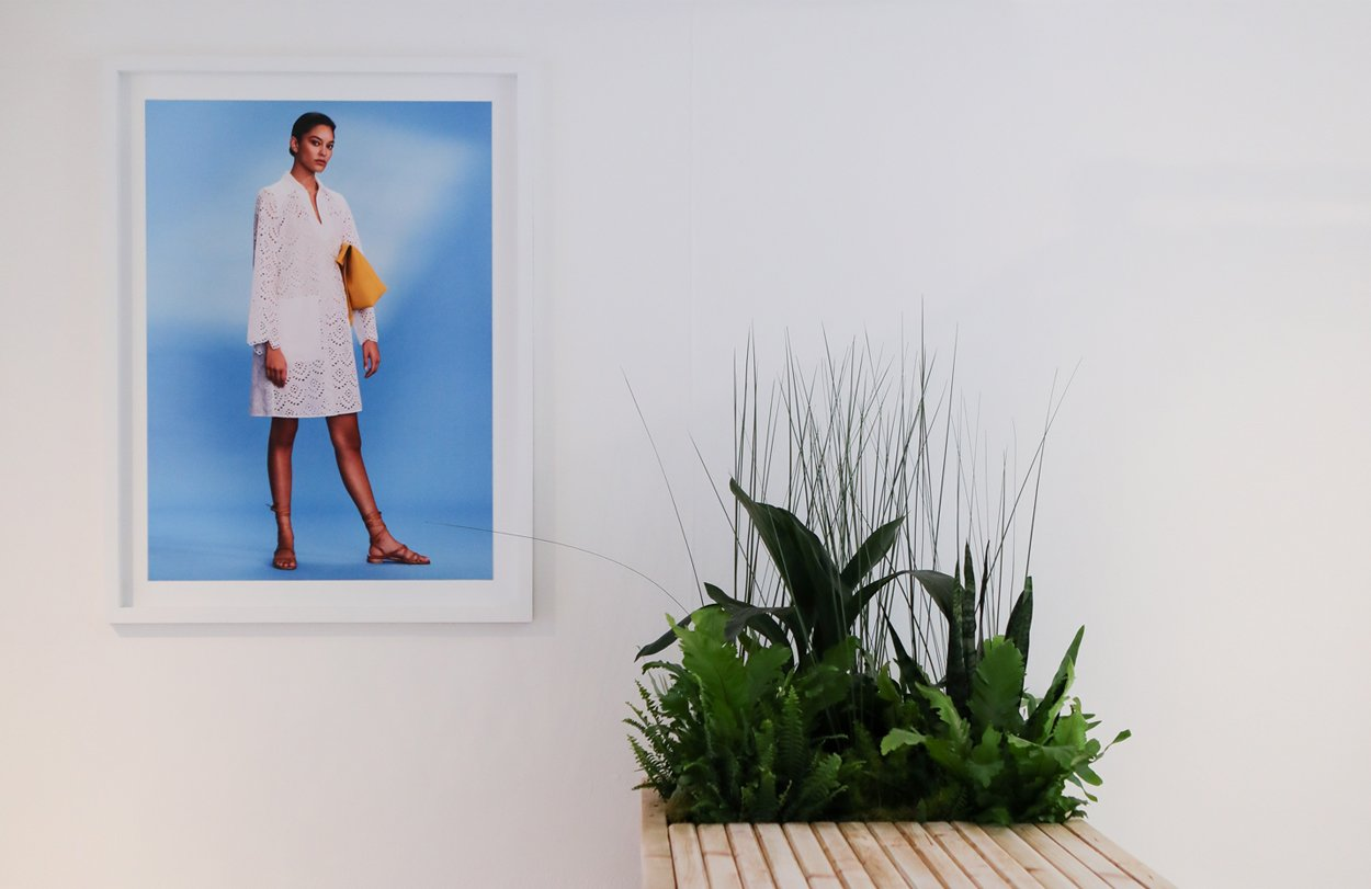 A sophisticated white gallery interior with a bright blue picture next to a bleacher wood planter with lush green plants