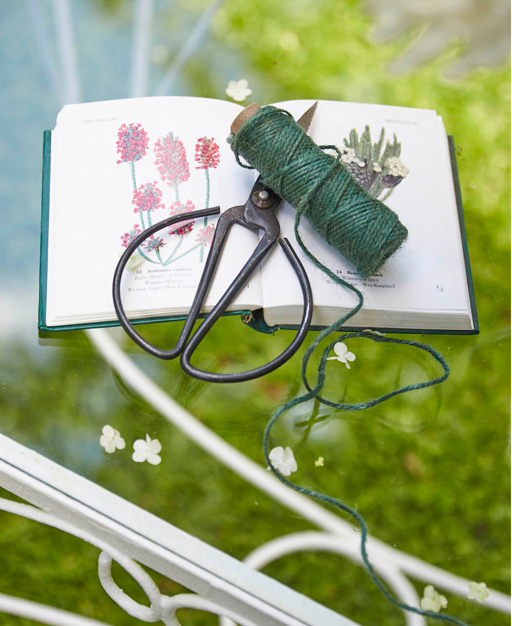 A pair of gardening scissors sits on top of a book of flowers.