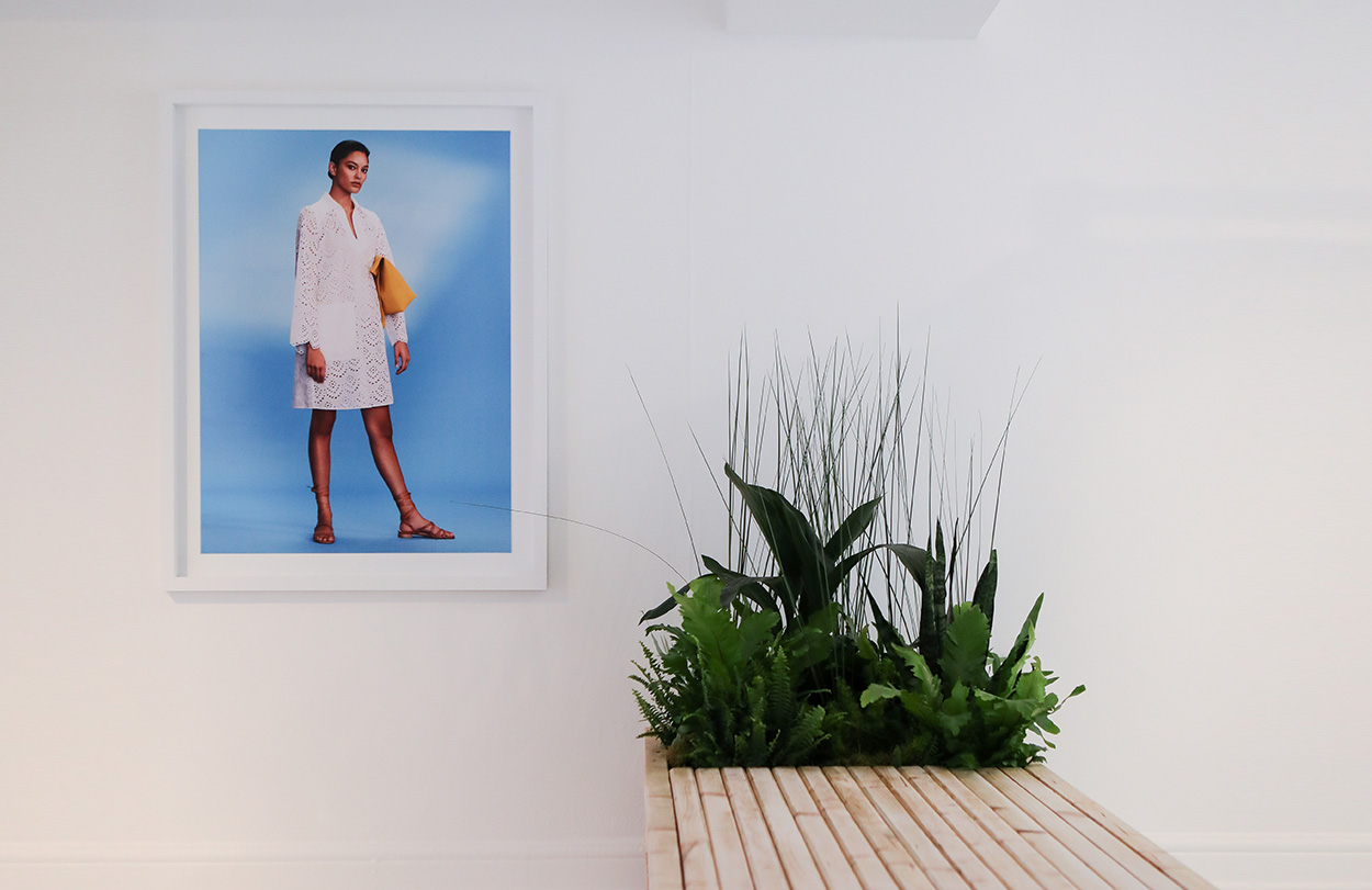 A sophisticated white gallery interior with a bright blue picture next to a bleached wood planter with lush green plants.