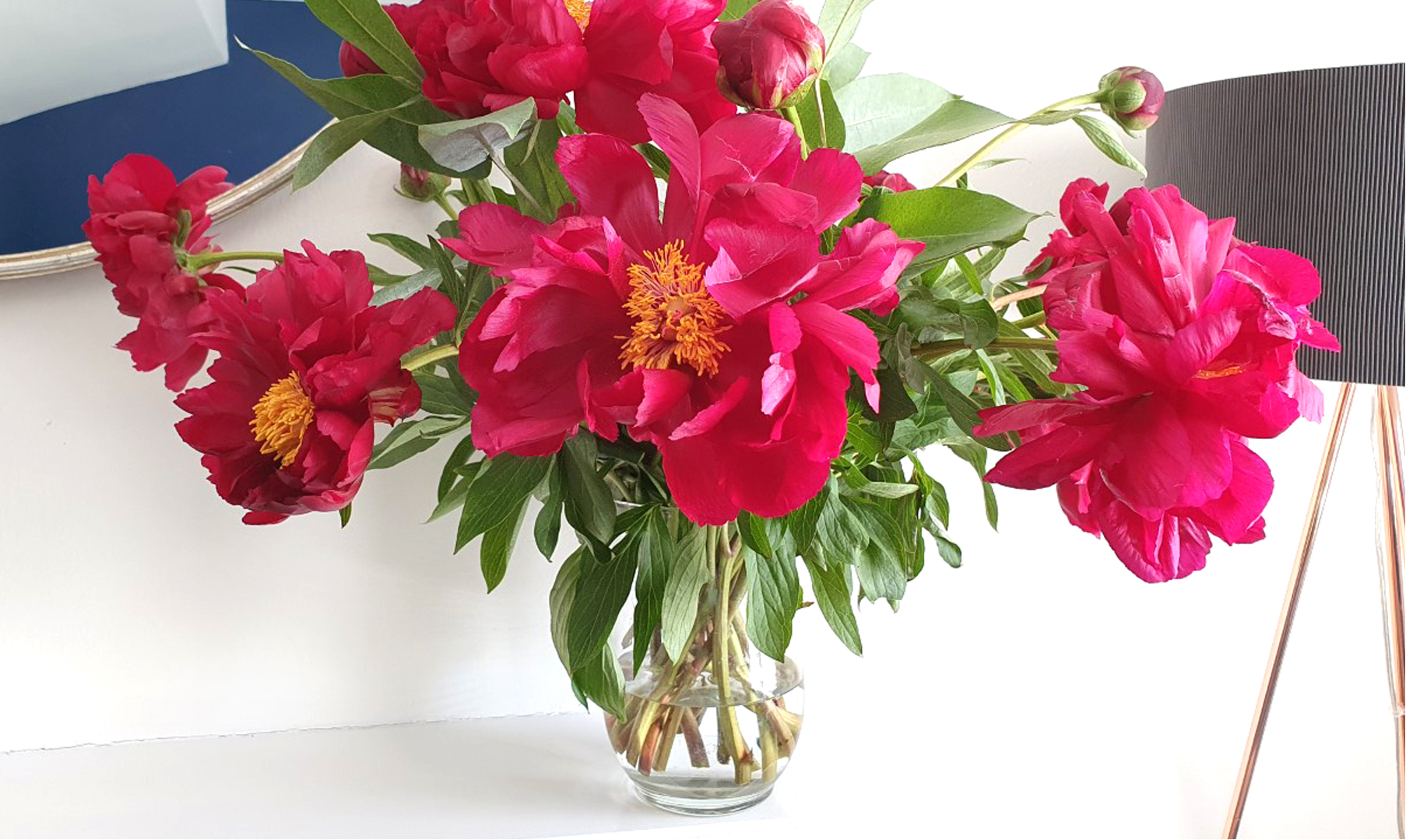 A bright pink vase of peonies