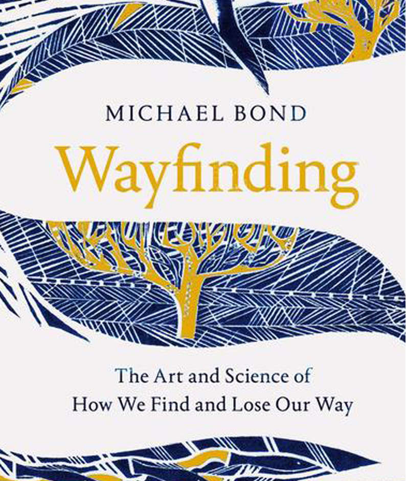 Blue and yellow cover of Wayfinding by Michael Bond