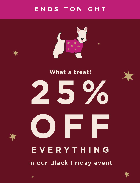 Black Friday Offer 25 Percent Off Everything Ends Tonight