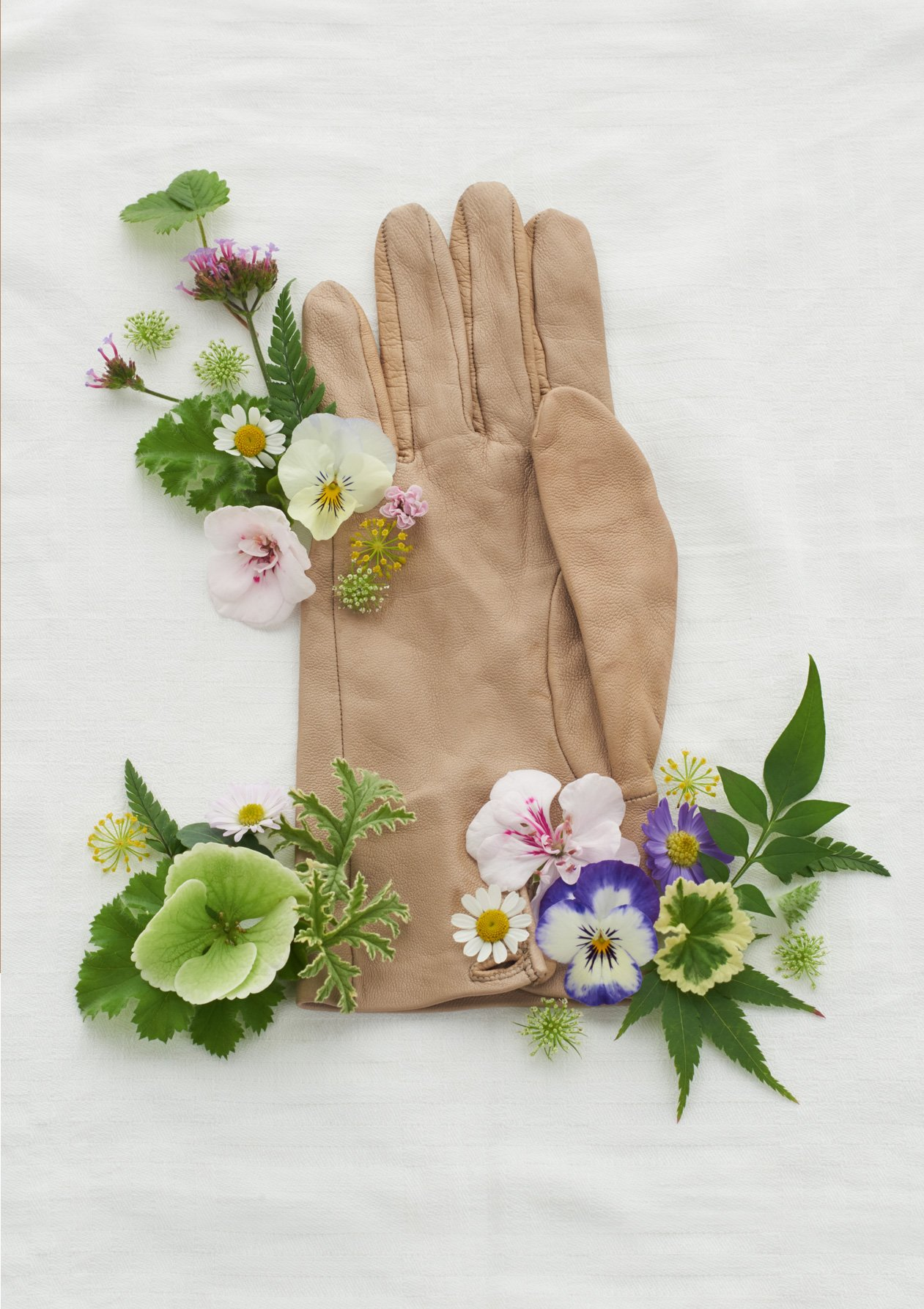 Bringing the outdoors inside wth wildflowers forraged from your garden, styled here with a tan leather gardening glove.