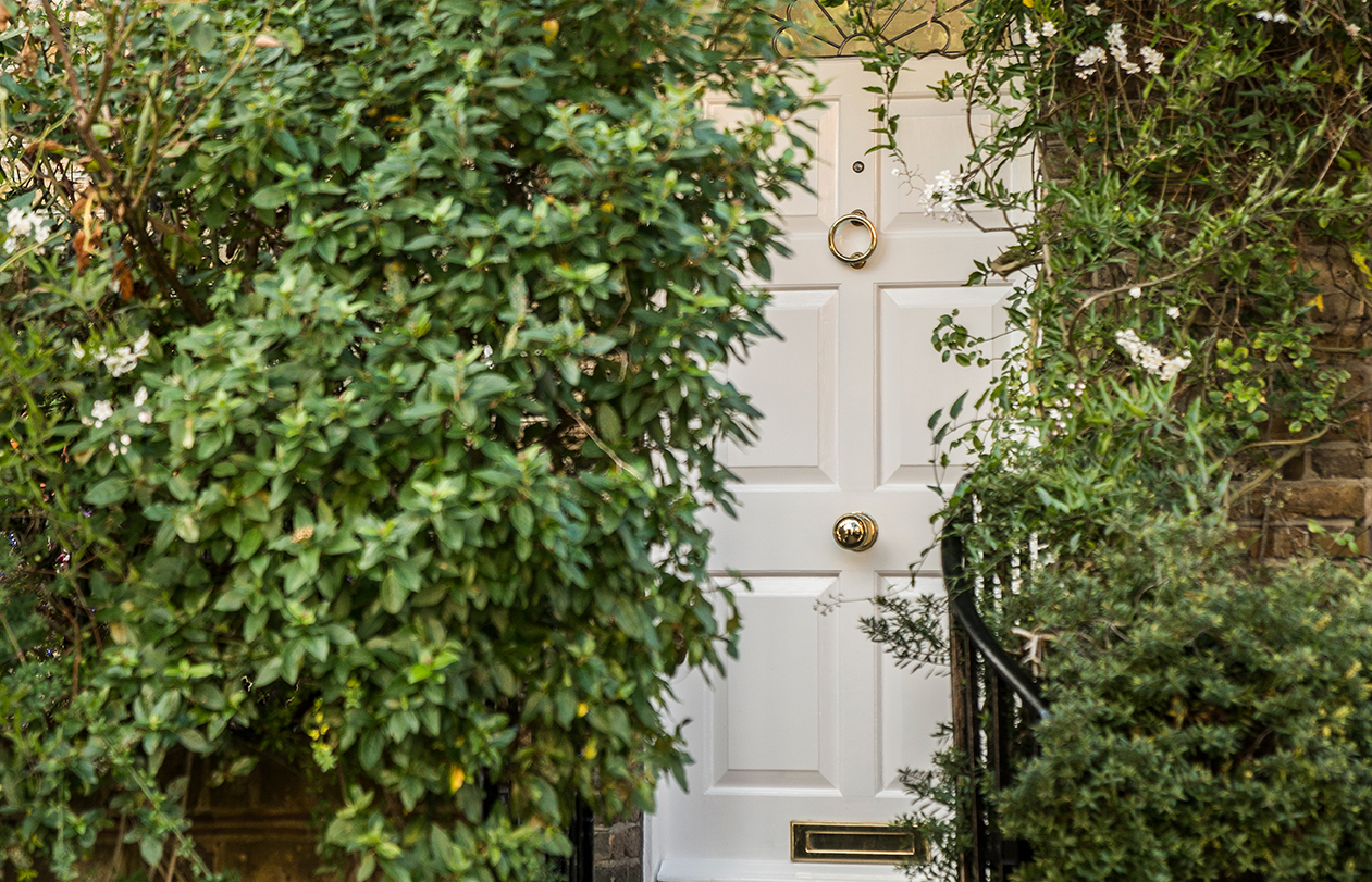White front door surrounded by green foliage
