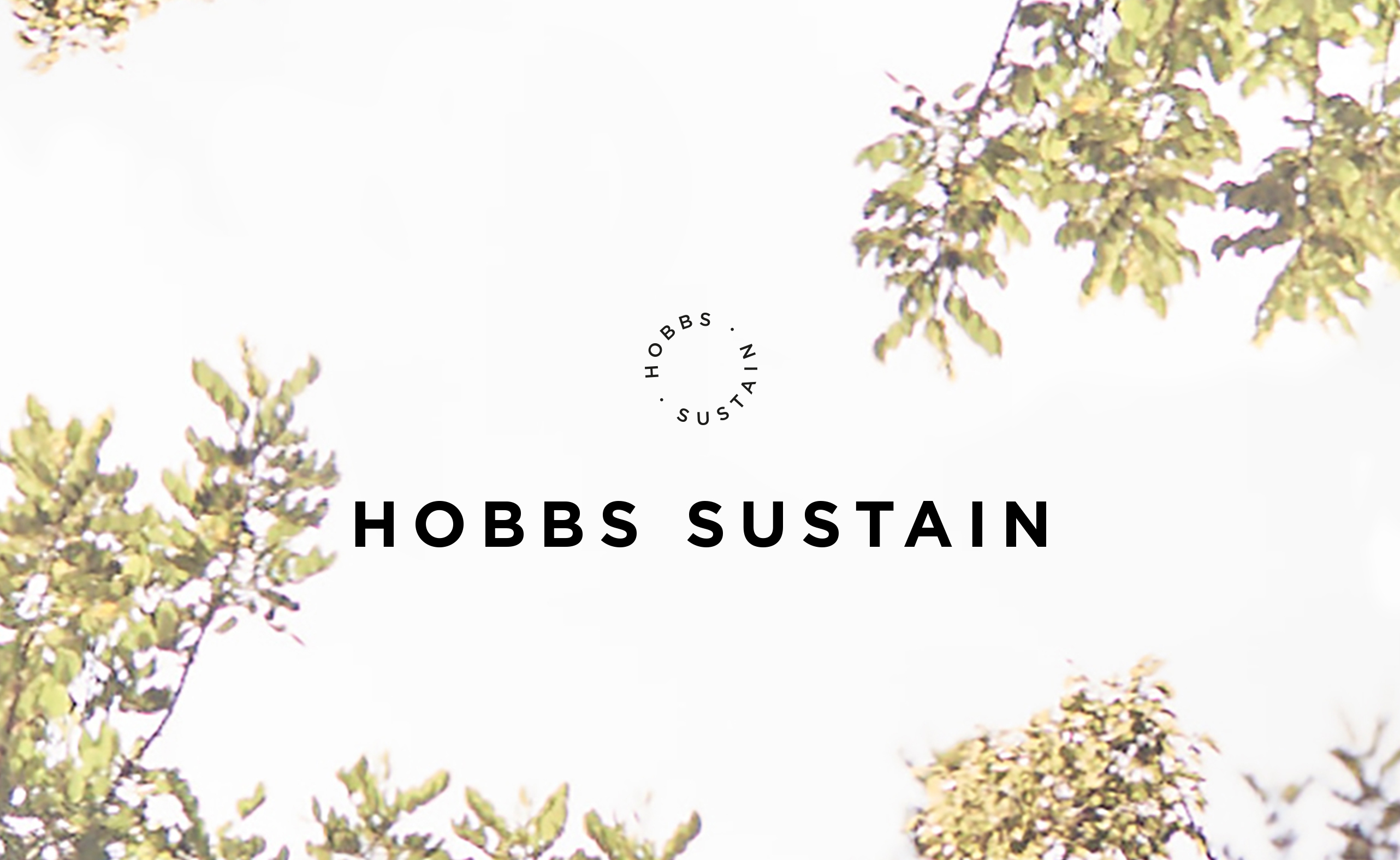 A white sky through the branches of trees Hobbs sustain title overlayed