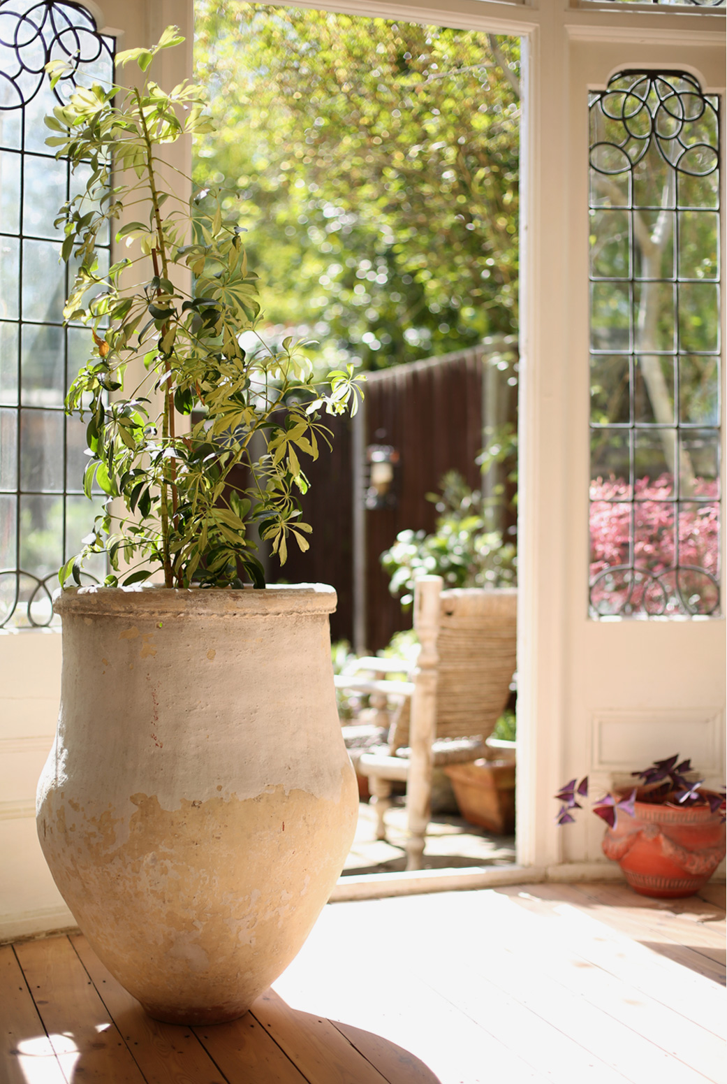 A nineteenth century greek olive jar gives a sense of outside inside whatever the weather.