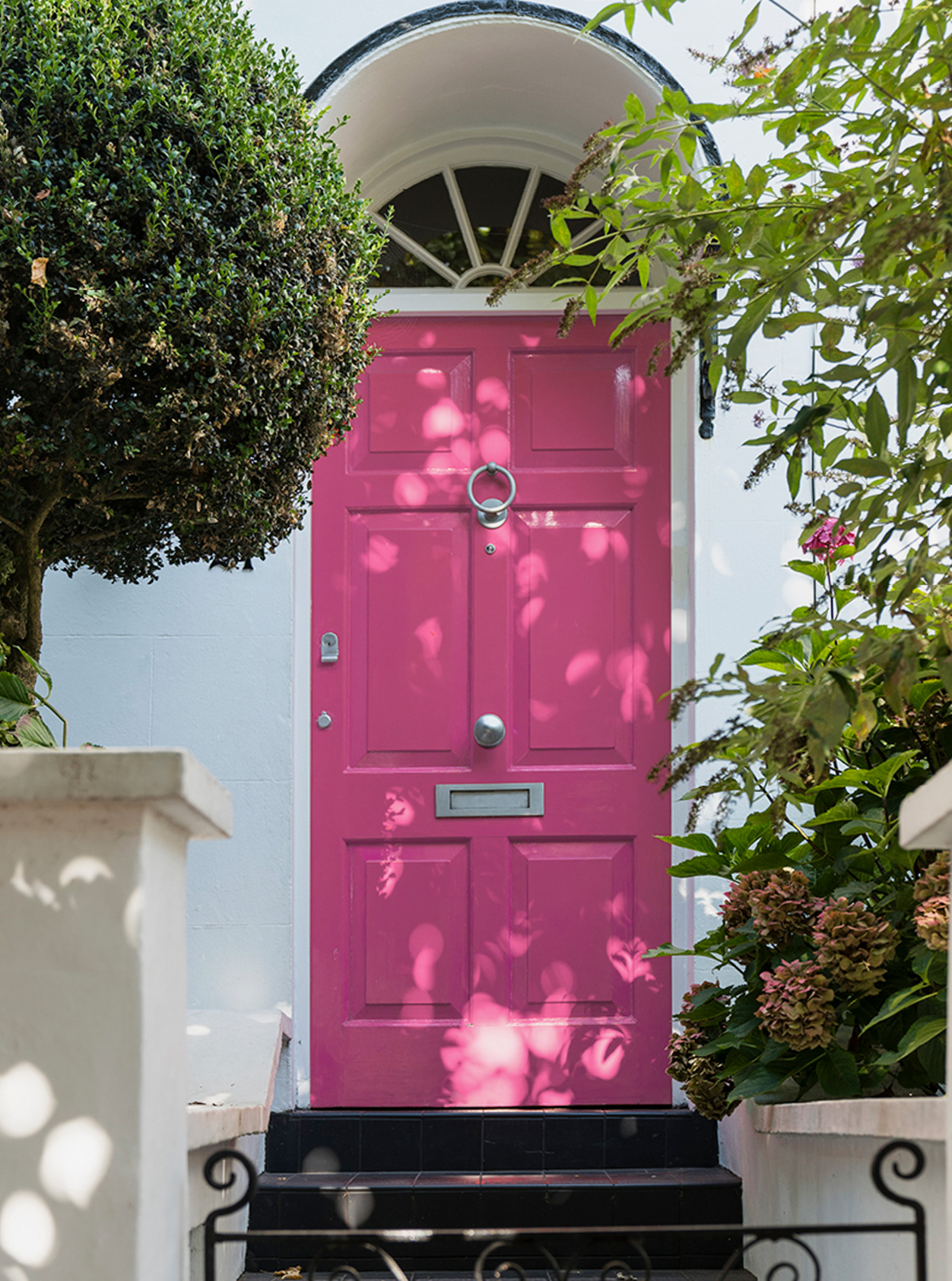 A classic hampstead townhouse frontage with a pink front door, with surrounding greenery.